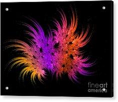 Rainbow Bouquet Acrylic Print by Geraldine DeBoer