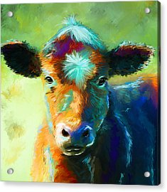Rainbow Calf Acrylic Print by Michelle Wrighton