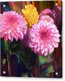 Rainbow Dahlias Acrylic Print