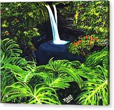 Rainbow Falls #83 Acrylic Print by Donald k Hall