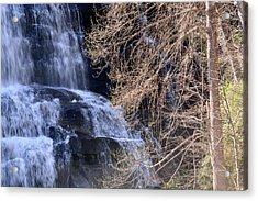 Rainbow Falls In Gorges State Park Nc 03 Acrylic Print by Bruce Gourley