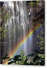 Rainbow Falls Acrylic Print by Marty Koch