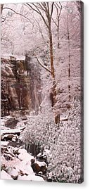 Rainbow Falls Smoky Mountain National Park -- Painted Photo. Acrylic Print by Christopher Gaston