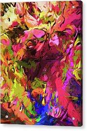 Rainbow Flower Rhapsody Pink Cobalt Blue Acrylic Print
