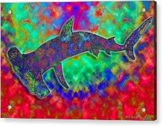 Rainbow Hammerhead Shark Acrylic Print