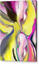 Rainbow Iris Acrylic Print by Anne Hamilton