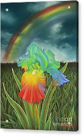 Rainbow Iris Acrylic Print by Louise Green