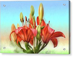 Acrylic Print featuring the photograph Rainbow Lilies by Lois Bryan
