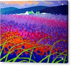 Rainbow Meadow Acrylic Print by John  Nolan