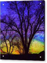 Rainbow Morning Acrylic Print by Julie Lueders
