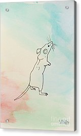 Rainbow Mouse Acrylic Print by Stefanie Forck