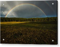 Rainbow Over The Forest Acrylic Print