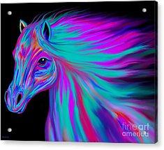 Rainbow Painted Horse  Acrylic Print