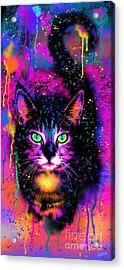Rainbow Painted Tabby Cat  Acrylic Print