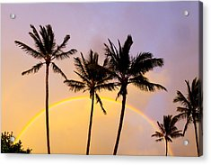 Rainbow Palms Acrylic Print by Sean Davey