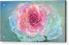 Rainbow Rose Acrylic Print by Ann Marie Bone