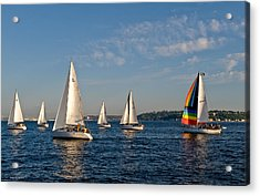 Rainbow Sails Acrylic Print by Tom Dowd