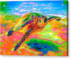 Rainbow Sea Turtle Acrylic Print