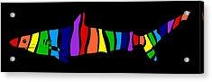 Rainbow Shark Acrylic Print