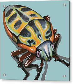 Acrylic Print featuring the painting Rainbow Shield Beetle by Jude Labuszewski