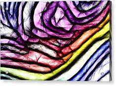 Rainbow Slide 400x Acrylic Print