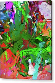 Rainbow Tropic Acrylic Print