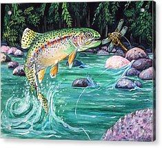 Rainbow Trout Acrylic Print by Bette Gray