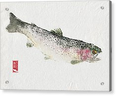 Rainbow Trout #rt0003 Acrylic Print