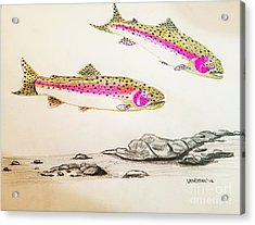 Rainbow Trout Scene - Original Gel Pen Acrylic Print