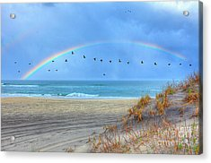 Rainbows And Wings I Acrylic Print by Dan Carmichael