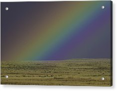 Rainbows End Acrylic Print by Elizabeth Eldridge