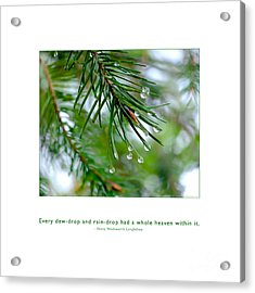 Acrylic Print featuring the photograph Raindrop Has Whole Heaven by Kristen Fox