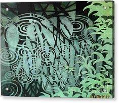 Raindrops-on-raindrops Acrylic Print by Anne Havard