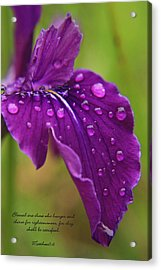 Raindrops Acrylic Print by Tyra  OBryant