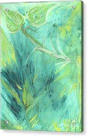 Rainforest Haze Acrylic Print