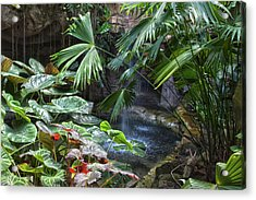 Rainforest Acrylic Print