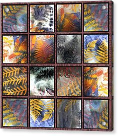 Rainforest Remnants Acrylic Print by Sarah King