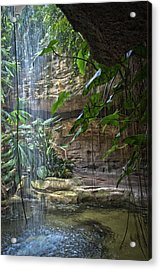 Rainforest Waterfall Acrylic Print