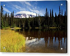 Rainier Capped Acrylic Print by Mike  Dawson