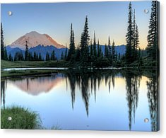 Rainier From Tipsoo Acrylic Print by Peter Mooyman