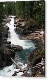 Rainier Waterfall Acrylic Print by Ty Nichols