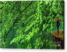Raining Serenity - Plitvice Lakes National Park, Croatia Acrylic Print