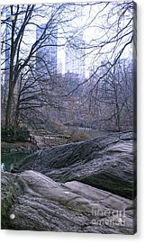 Rainy Day In Central Park Acrylic Print by Sandy Moulder