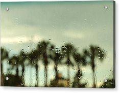 Rainy Daze Acrylic Print by Christopher L Thomley