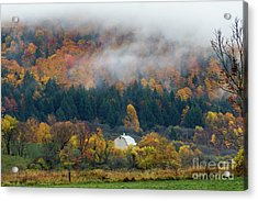 Rainy Fall Day Acrylic Print by Rhys Templar