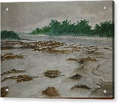 Rainy Season Acrylic Print by Bhalchandra Salunkhe