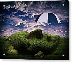 Rainy Summer Day Acrylic Print by Mihaela Pater