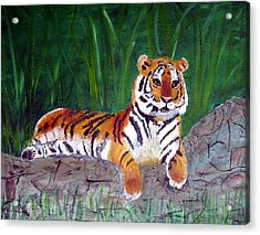 Rajah Acrylic Print by Marcia Paige