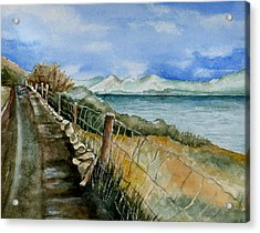 Rambling Walk Acrylic Print by Brenda Owen