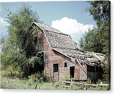 Ramshackle  Acrylic Print by Jame Hayes